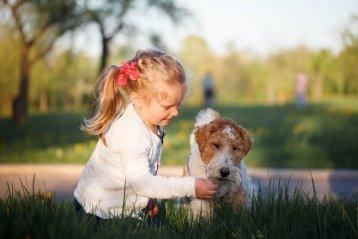 Фотография ребенка с собакой в парке